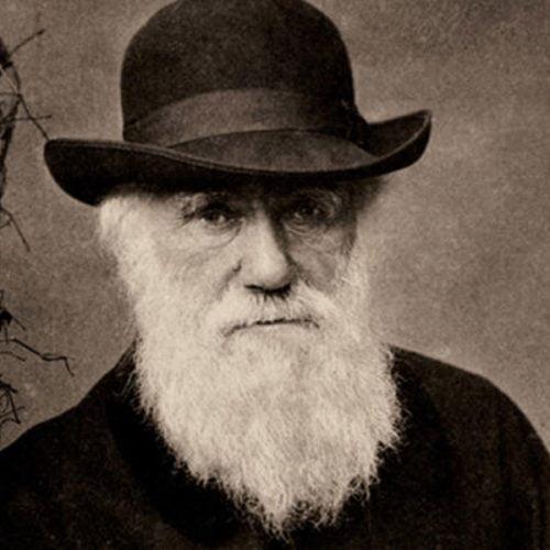 Charles Darwin: Evrim Teorisi'nin serüvenzedesi